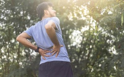 The hidden value of Low Back Pain Exercise